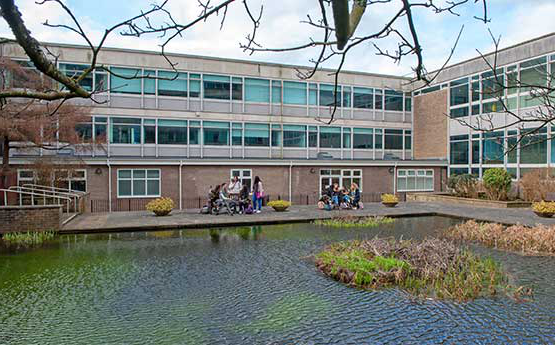 The pond at the Glyndwr Building
